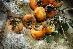 Nya orange persimoner Royaltyfri Fotografi
