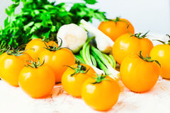 Nya orange tomater, saftiga sommargrönsaker och saftiga gräsplaner Arkivfoto
