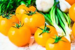 Nya orange tomater, saftiga sommargrönsaker och saftiga gräsplaner Royaltyfri Fotografi