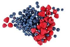 Nya organiska blåbär och hallon Rich med vitaminer bakgrund isolerad white Arkivbild
