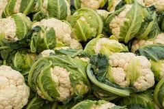 Nya organiska blomkålar på bönderna marknadsför Närbildblomkålbakgrund Sund strikt vegetarianmat arkivfoto