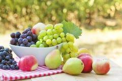 Nya organiska frukter Arkivfoto