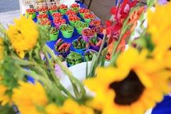 Nya organiska frukter från en marknad i Kalifornien Royaltyfri Foto