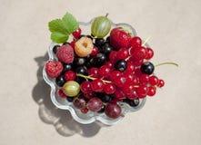 Nya organiska frukter i en glass bunke Royaltyfri Bild