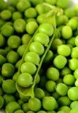 Nya organiska gröna ärtor arkivbild