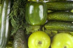 Nya organiska gröna grönsaker - gurka, persilja, paprica, äpple och zucchini Fotografering för Bildbyråer