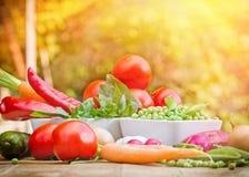 Nya organiska grönsaker Arkivfoto