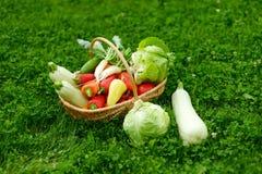 Nya organiska grönsaker i en korg Royaltyfria Foton