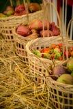 Nya organiska grönsaker i korgar som göras av handgjord bambu Royaltyfria Bilder
