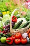 Nya organiska grönsaker i vide- korg i trädgården Royaltyfri Bild