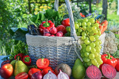 Nya organiska grönsaker och frukter i trädgården Arkivfoton