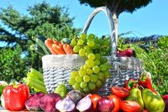 Nya organiska grönsaker och frukter i trädgården Royaltyfri Bild