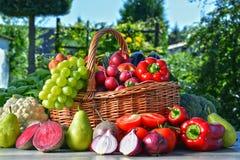 Nya organiska grönsaker och frukter i trädgården Royaltyfri Fotografi