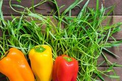 Nya organiska grönsaker på träbakgrund Arkivbilder