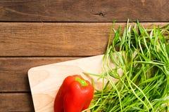 Nya organiska grönsaker på träbakgrund Royaltyfri Foto