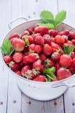nya organiska jordgubbar Royaltyfri Foto