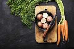 Nya organiska lantgårdgrönsaker: morötter, potatisar, nya örter, kryddor och olja på ett mörker texturerade bakgrund med a Arkivbild
