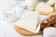 Nya organiska mejeriprodukter Ost smör, gräddfil, yoghurt och mjölkar arkivfoto