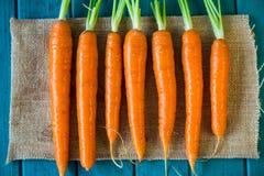 Nya organiska morötter för marknad Arkivfoto