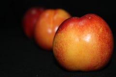 Nya organiska nektariner Fotografering för Bildbyråer