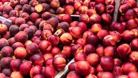 Nya organiska nektariner på bönderna marknadsför i Paris Royaltyfri Fotografi