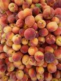 Nya organiska persikor, full bakgrund för organisk mat för ram Royaltyfria Bilder