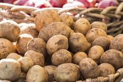 Nya organiska potatisar från bondes marknad Arkivfoto