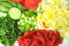 Nya organiska skivade grönsaker på den vita plattan på trätabellen Nära övre, selektivt fokuserar Royaltyfria Foton