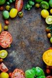 nya organiska tomater Arkivfoton
