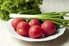 Nya organiska tomater och gurkor med salladslökar på en vit platta arkivbilder