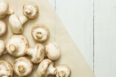 Nya organiska vita champinjoner på en vit träbakgrund, bästa sikt, utrymme för text royaltyfri fotografi