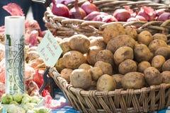 Nya organiska Yukon guld- potatisar och lökar på bondes marknad Arkivfoton