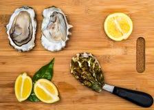 nya ostron med ett blad Arkivbild