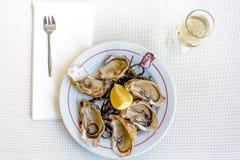 Nya ostron med vitt vin royaltyfri foto