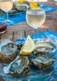 Nya ostroner och ett exponeringsglas av wine Fotografering för Bildbyråer