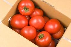 nya paper röda tomater för ask Royaltyfria Bilder
