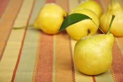 Nya pears Arkivfoton