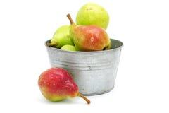 Nya pears i metallisk bunke på den vita backgroen Fotografering för Bildbyråer