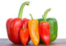 nya peppar Fotografering för Bildbyråer