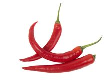nya perfekt röda varma peppar royaltyfri fotografi