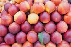 Nya persikor. Arkivfoto