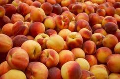 Nya persikor Arkivfoto