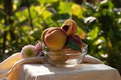 Nya persikor i den glass bunken Arkivfoton