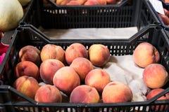 Nya persikor i en kassett i fruktmarknaden Royaltyfri Bild