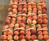Nya persikor i en korg på bondens marknad arkivbild