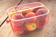 Nya persikor i plast- bunke Fotografering för Bildbyråer