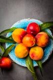 Nya persikor på blått pläterar, grå färger kritiserar bakgrund Top beskådar Arkivbild