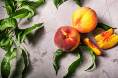 Nya persikor, persikafruktbakgrund, söta persikor, grupp av p Royaltyfria Foton