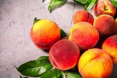 Nya persikor, persikafruktbakgrund, söta persikor, grupp av p Royaltyfria Bilder