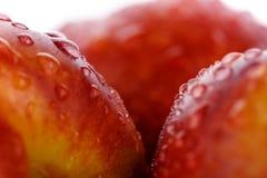 Nya persikor som täckas av droppar på vit bakgrund Makrofoto Royaltyfri Foto